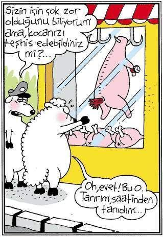 Birbirinden komik kurban karikatürleri 5