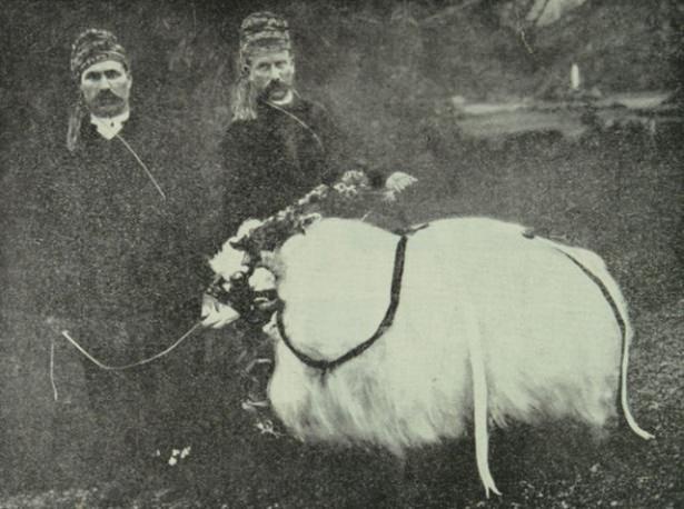 Osmanlı'da Kurban Bayramı 42