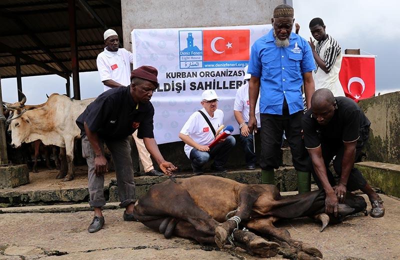 Türkiye'nin kurban yardımları yüzleri güldürüyor 20