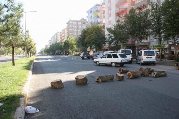 Hayalet şehir Diyarbakır 3