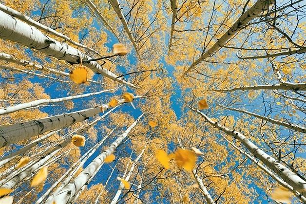 Doğa harikası manzaralar 9