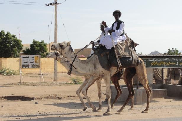 Afrika'nın en büyüğü Sudan'da bayram 7