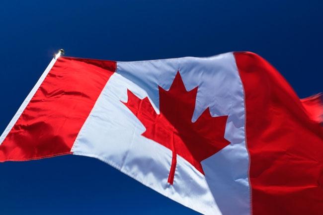 Ülke bayraklarının anlamları 14