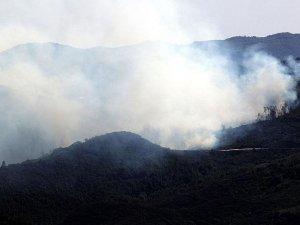 Türkiye - Suriye sınırındaki orman yangını sürüyor