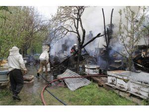 Çankırı'da 30 kovan arı yangında telef oldu