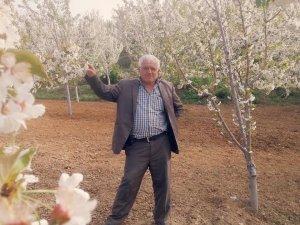Hadim'de Cemil Ceylan'ın kiraz mutluluğu