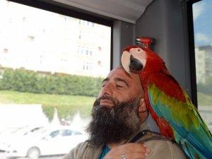 'Allah' diyen papağan metrobüs yolcularını hayrete düşürdü