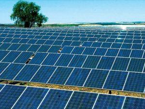 'Güneş enerjisinde Türkiye üretim üssü haline gelebilir'