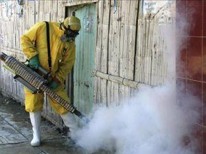 Zika virüsü daha da tehlikeli olabilir