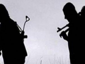 PKK'nın sözde Van sorumlusu öldürüldü