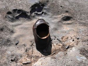 Çin'de en küçük dinozor ayak izleri bulundu