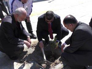 Beyşehir'de Gençlik Merkezi'nin bahçesini ağaçlandırdı