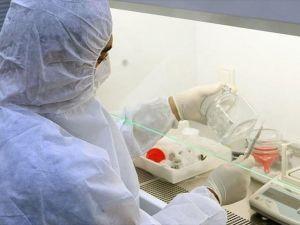 'Helal' kemik tozu için düğmeye basıldı
