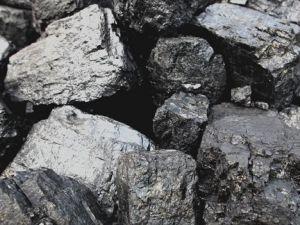 'Yerli kömür ülke menfaatleri için önemli'