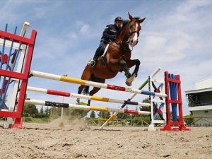 Jandarmanın atları 'özel' görevlere hazırlanıyor