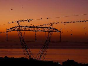Türkiye'de elektrik AB'den ucuz