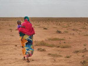 Türkiye'den Afrika ülkelerine 'çölleşmeyle mücadele' eğitimi