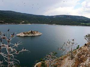 Adıgüzel Barajı kuşlarla cıvıl cıvıl