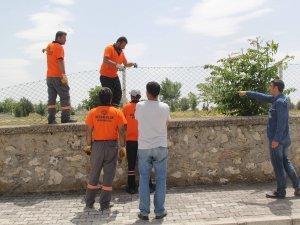 Cihanbeyli'de mezarlıklar onarılıyor