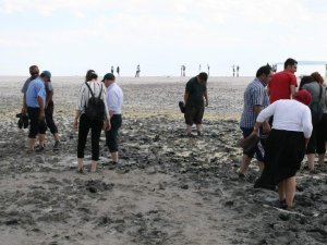 Tuz Gölü'nün çamuruna şifa için geliyorlar