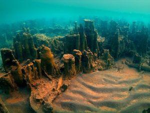 Van Gölü'nde 20 metrelik dikitler bulundu