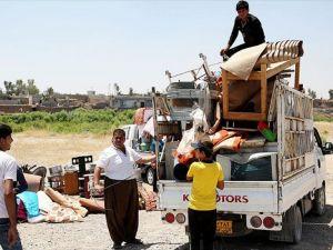 Irak'ta 3,6 milyon kişi yerlerinden edildi