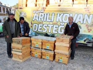 Büyükşehir'den üreticiye arı desteği