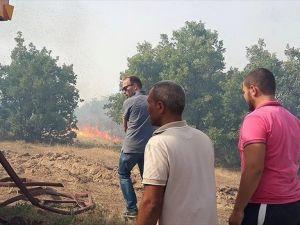 Uşak'ta makilik alanda yangın