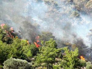 Güney Kıbrıs'ta orman yangını devam ediyor