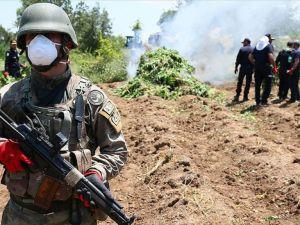 Lice'de PKK'nın finans kaynağına darbe