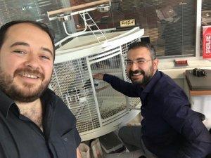 Mustafa Genç ve Muhammed Ceylan'ın papağan sevgisi