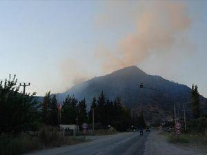 Aydın'da çıkan yangının ardından soğutma çalışmaları sürüyor