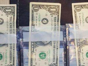 Fetö'nün '1 Dolarlık' Darbecileri