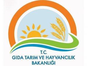Gıda Tarım Bakanlığı'nda büyük operasyon