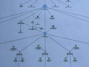 İşte FETÖ yapılanması: Örümcek ağı gibi