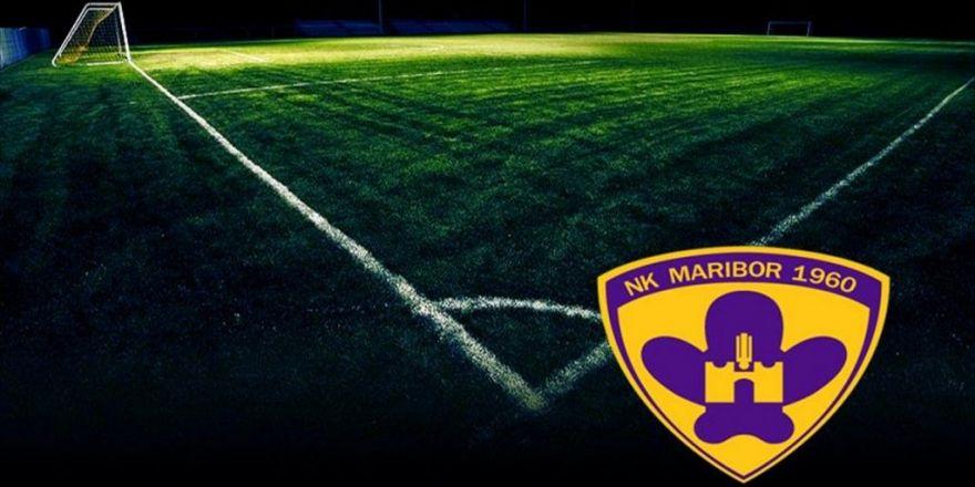 Slovenya Futbolu Yasta