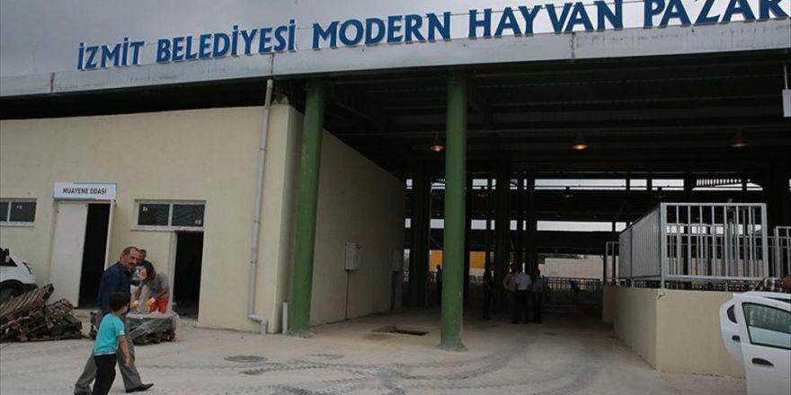 İstanbullular İçin İzmit'te Alternatif Kurbanlık Pazarı