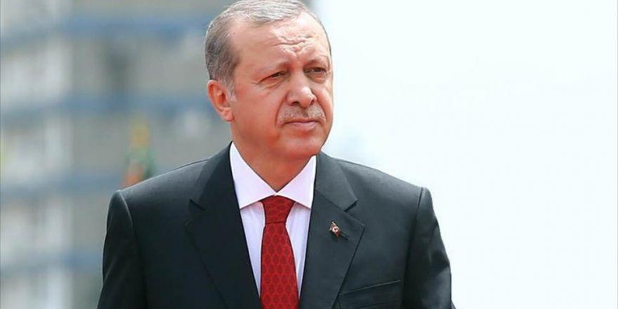12. Cumhurbaşkanı Erdoğan'ın Görevdeki İkinci Yılı