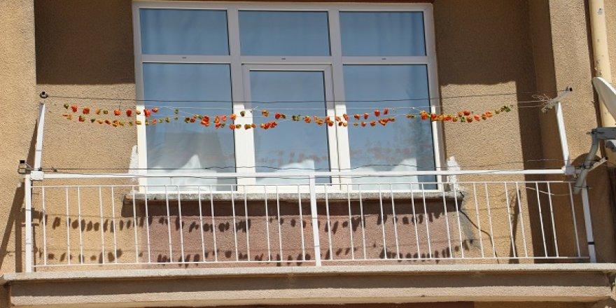 Balkon tarlası