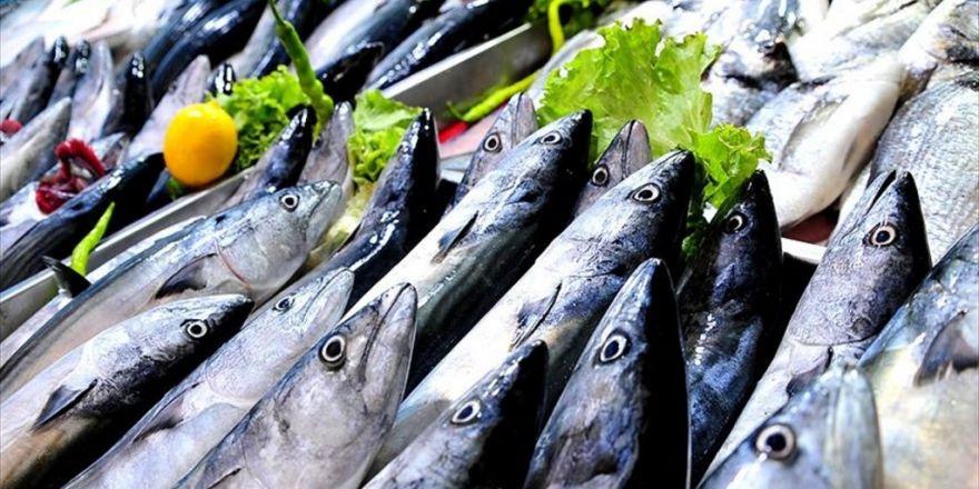 'Protein Kaynağı Balığı Kızartmadan Sık Tüketin'