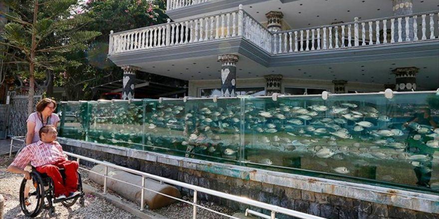 Balıklı Köşk'ün Tek Balığının Maliyeti 20 Bin Lira