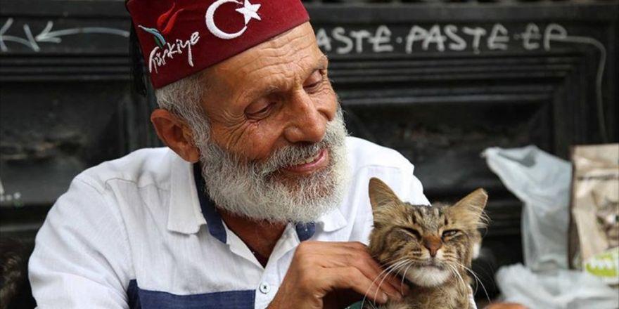 Güfteci Akova Vefayı Kedilerde Buldu
