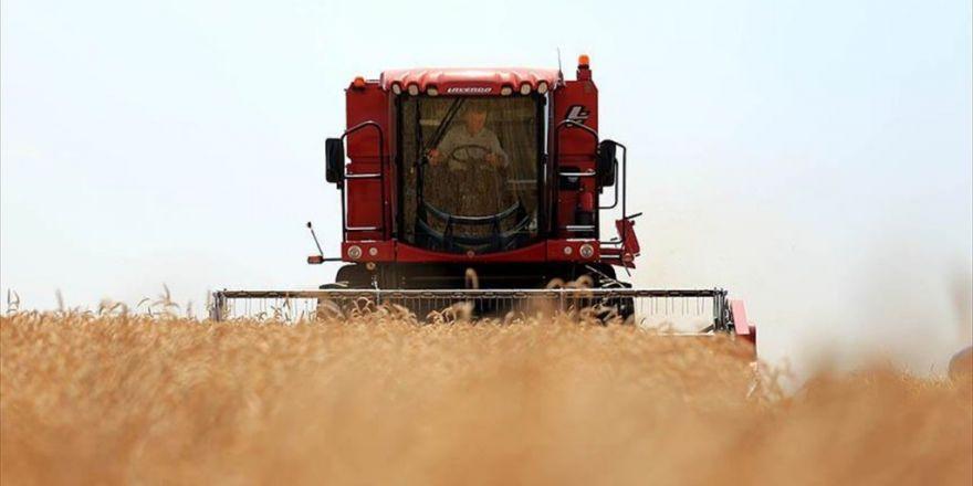 """""""Başaktan Buğdaya, Undan Ekmeğe"""" Emeğin Hikayesi"""