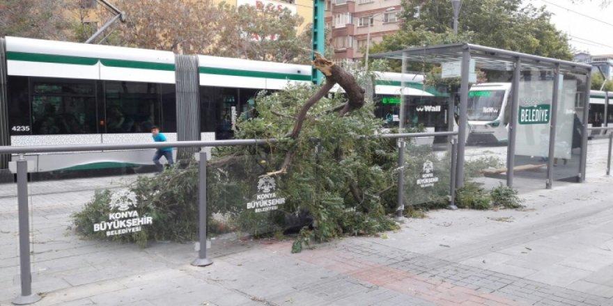 Konya'da şiddetli rüzgar!