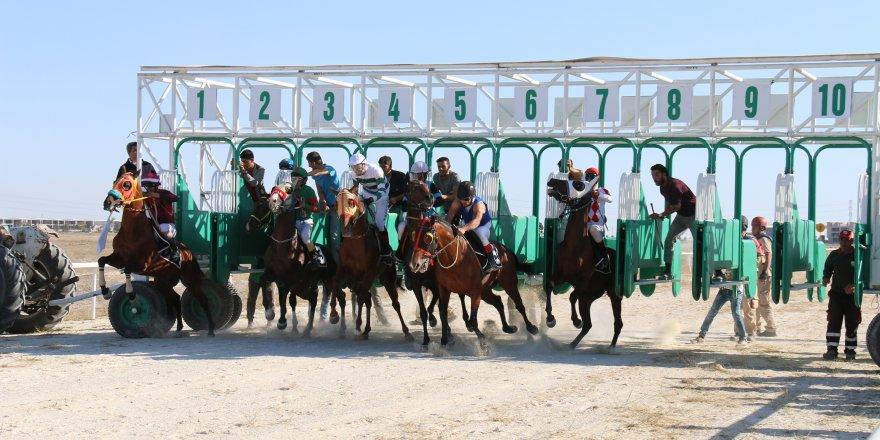 Konya'da Mahalli 24. Geleneksel Safkan Arap ve İngiliz At Yarışları gerçekleştirildi