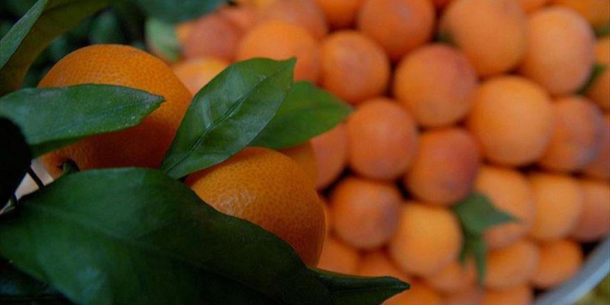 'C Vitaminini Tabletlerden Değil, Gıdalardan Alın'