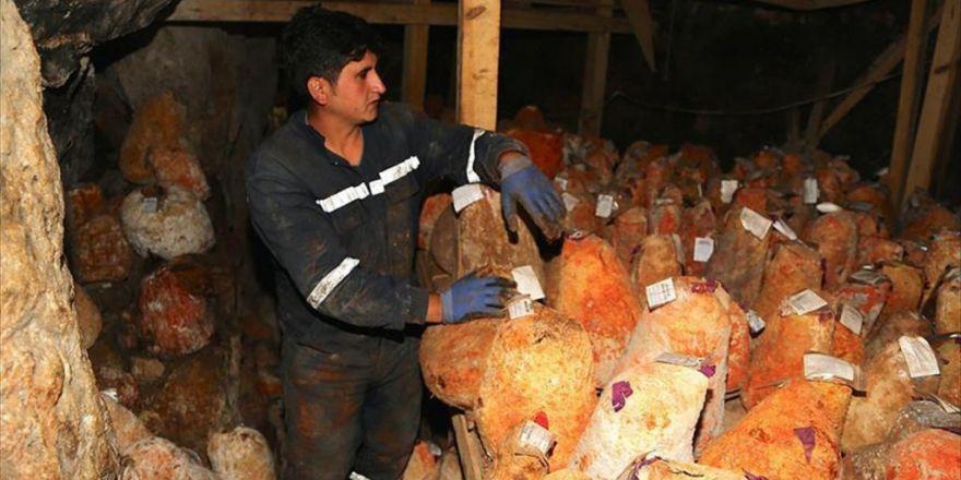 Mağarada Bekletilen 'Türk Rokforu' Fransızların Da İlgisini Çekti