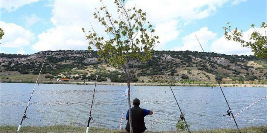 Balıkçılık İçin Olimpiyat Başvurusu