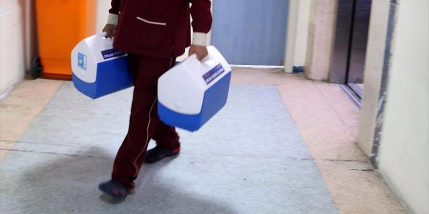 Organ Naklinde Uluslararası İşbirliği İçin Düğmeye Basılıyor