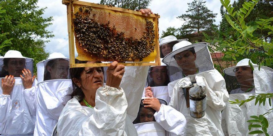 Expo 2016 Antalya'da 'Sokmayan Arılar' İlgi Görüyor